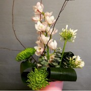 Front Facing Arrangement - From £25