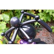 Halloween Spider  £5.99