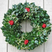 Wreath Holly - from £6.50